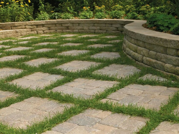 Patio Ground Cover Ideas find this pin and more on garden ideas concrete block gardens Ground Covers Millenia Architects